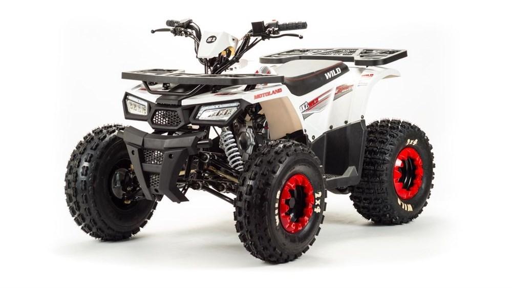 Motoland ATV 125 WILD - фото 10403