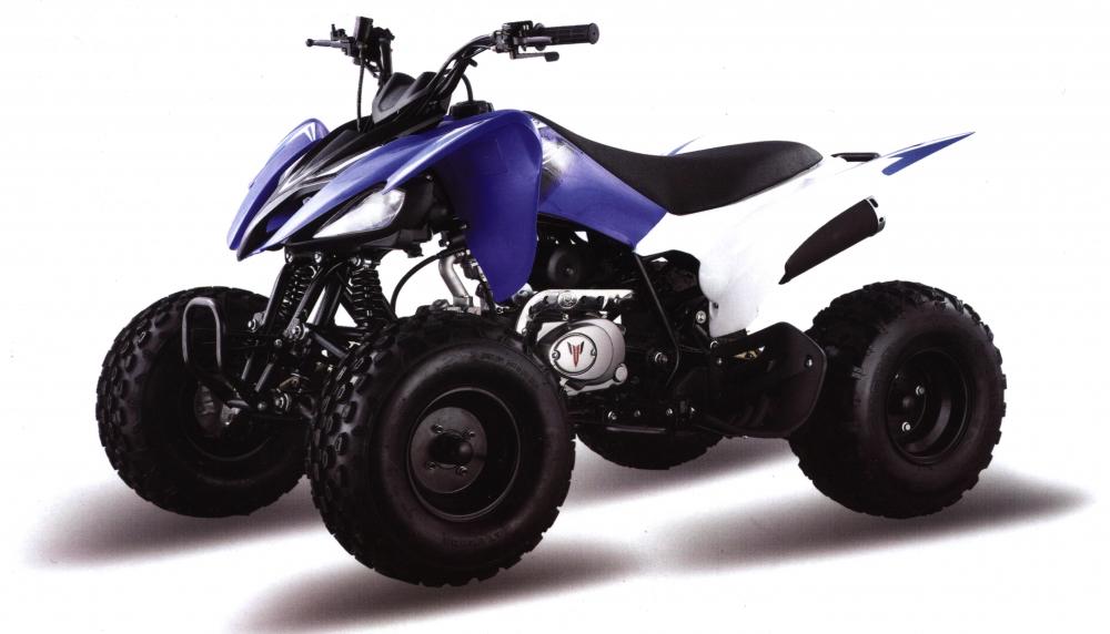 Motoland ATV 125 S - фото 10873