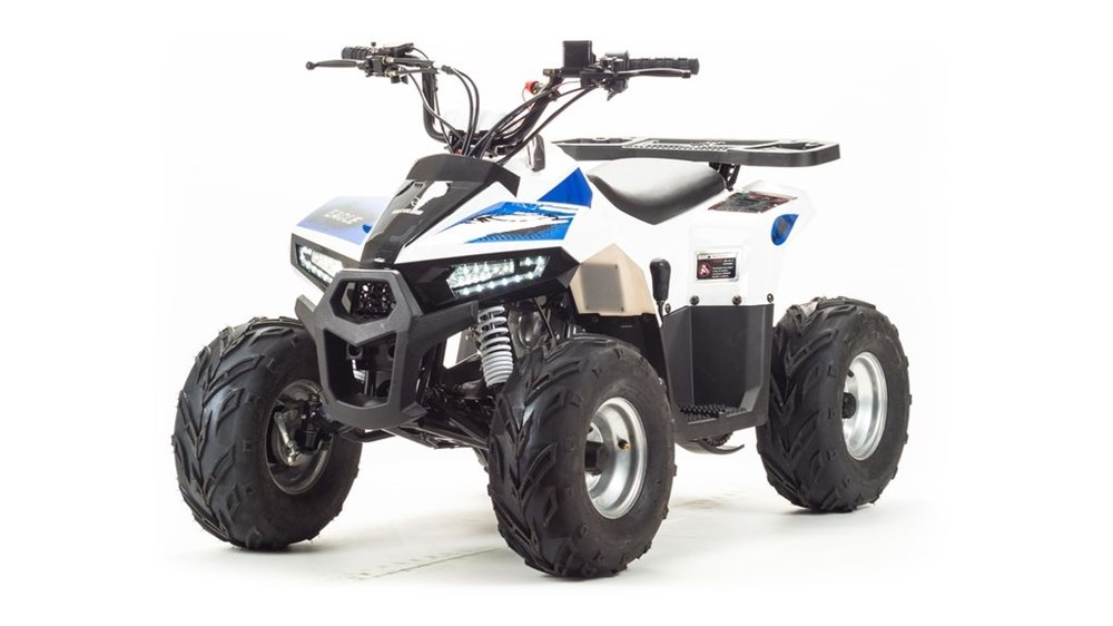 Motoland ATV 110 EAGlE - фото 10895