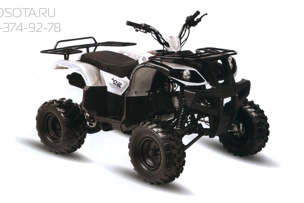 Motoland ATV 200 U - фото 11305