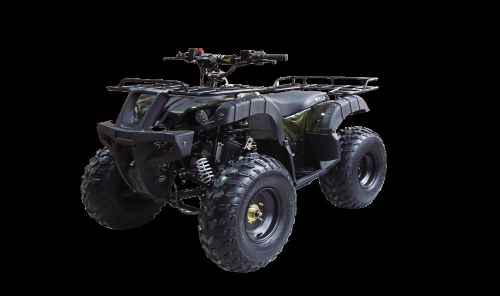 WELS ATV Thunder 150 - фото 11464