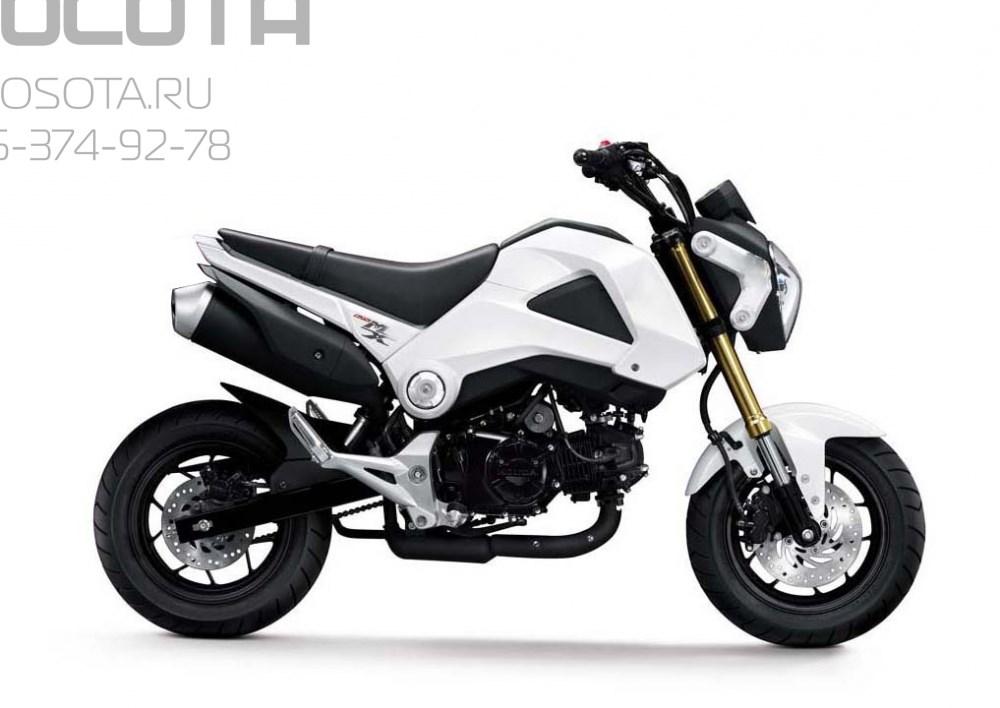 Motoland MX125 - фото 4955
