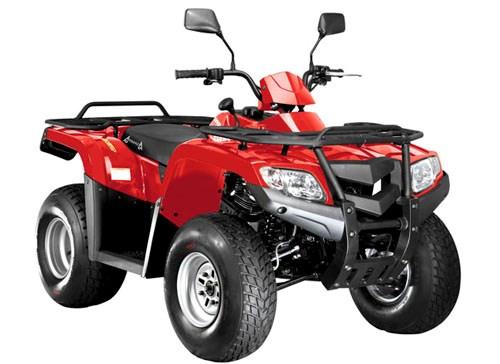 ArmadA ATV 200L - фото 6222