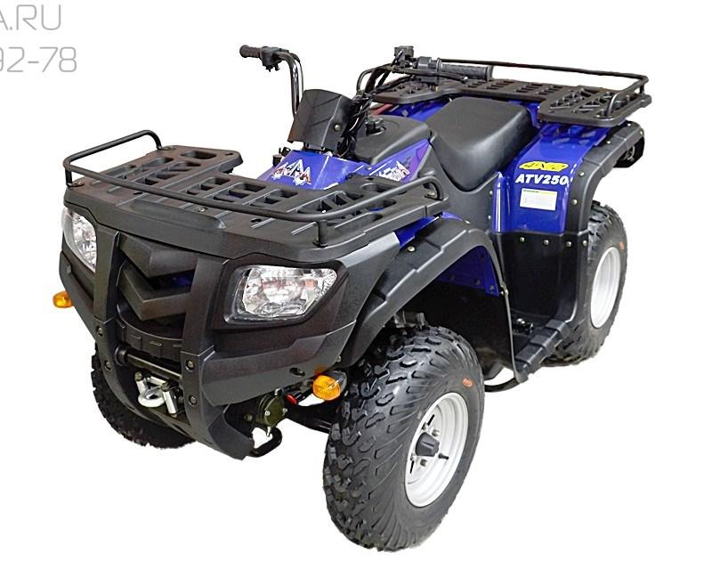 ArmadA ATV 250L - фото 6226