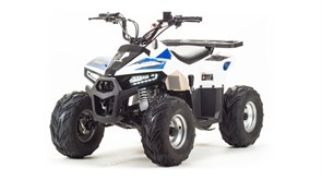 Motoland ATV 110 EAGlE