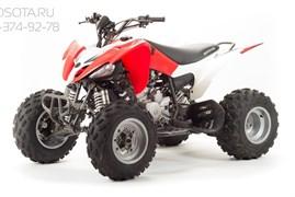 Motoland ATV 250 S