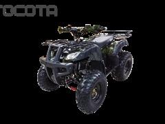 WELS ATV Thunder 200