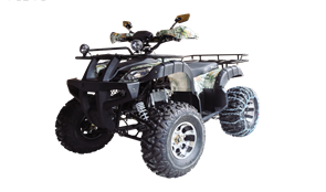WELS ATV Thunder 200 Lux