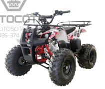 WELS ATV Thunder 125 Basic