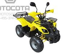 Armada ATV 110C