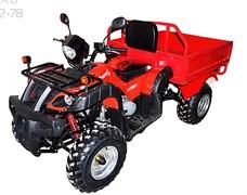 Armada ATV 200В-1