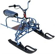 Лыжный модуль P550