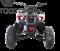 WELS ATV Thunder 125 Basic - фото 11496