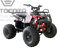 WELS ATV Thunder 125 Basic - фото 11497
