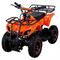 Motoland ATV ZR8 (E002) 800Вт - фото 9276